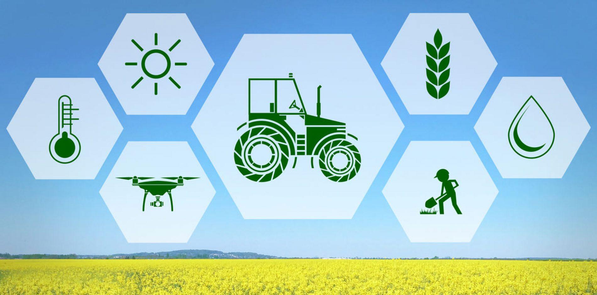 Agricoltura: nella nuova Legge di Bilancio 600 milioni per le aziende italiane del settore